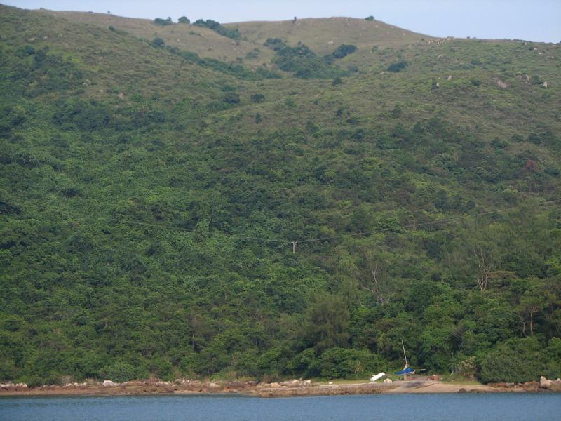 大水坑小碼頭3.jpg